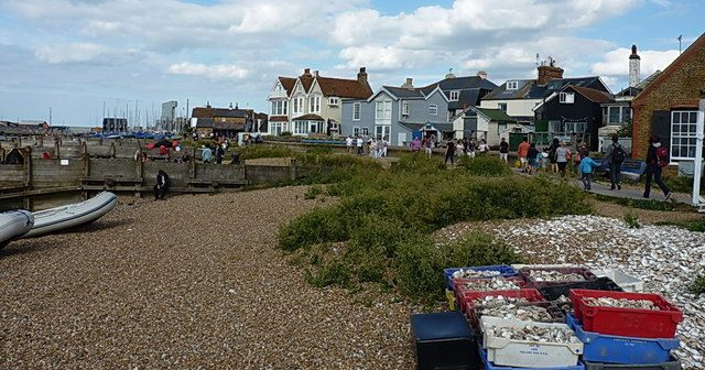 Living in Whitstable, Kent