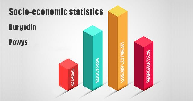 Socio-economic statistics for Burgedin, Powys