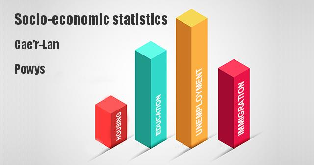 Socio-economic statistics for Cae'r-Lan, Powys