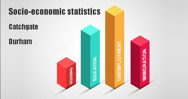 Socio-economic statistics for Catchgate, Durham