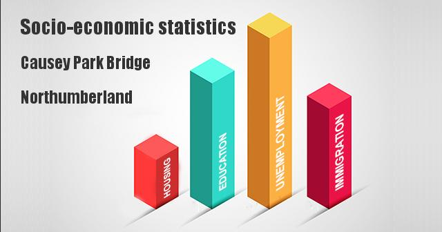 Socio-economic statistics for Causey Park Bridge, Northumberland