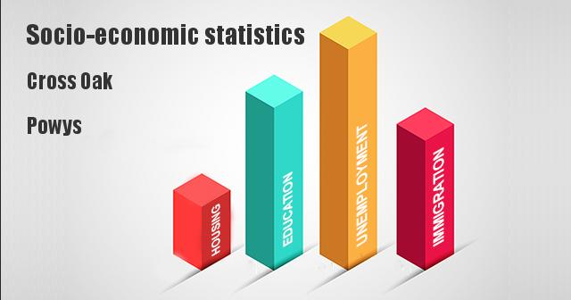 Socio-economic statistics for Cross Oak, Powys