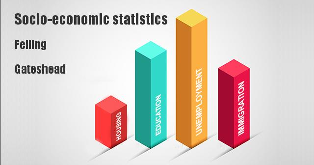 Socio-economic statistics for Felling, Gateshead