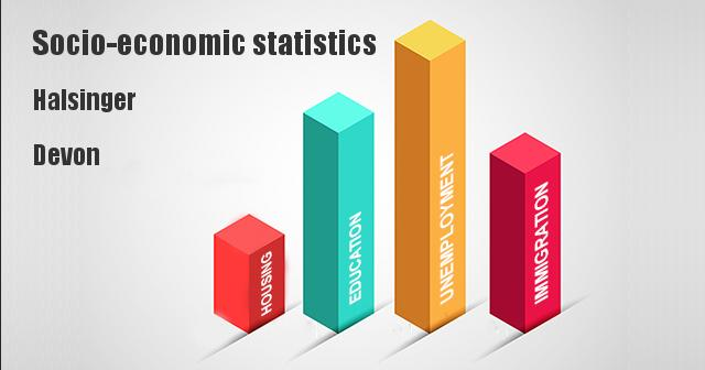 Socio-economic statistics for Halsinger, Devon
