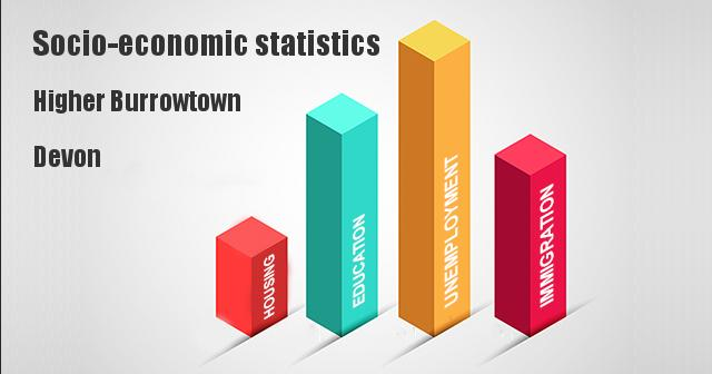 Socio-economic statistics for Higher Burrowtown, Devon