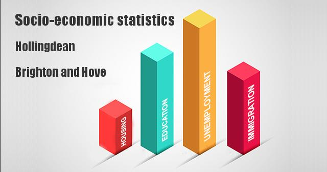 Socio-economic statistics for Hollingdean, Brighton and Hove