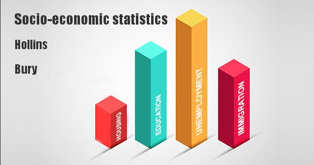 Socio-economic statistics for Hollins, Bury