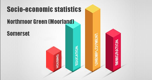Socio-economic statistics for Northmoor Green (Moorland), Somerset