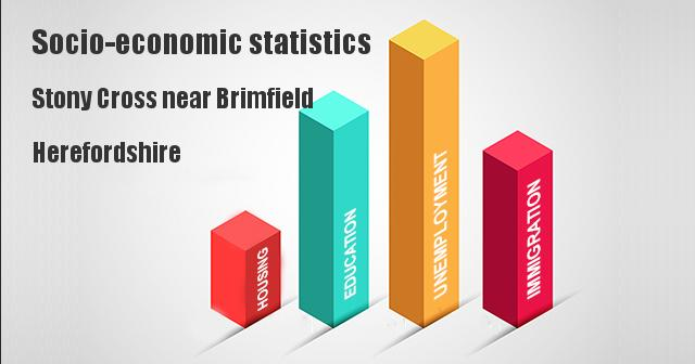Socio-economic statistics for Stony Cross near Brimfield, Herefordshire