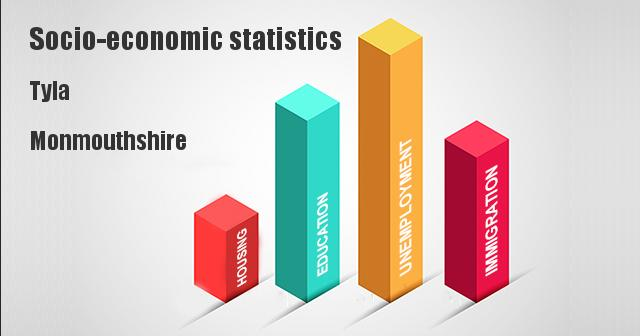 Socio-economic statistics for Tyla, Monmouthshire